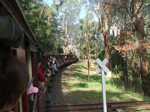 Riding the Puffing Billy