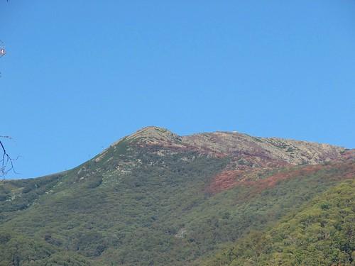Stunning Mt. Buller
