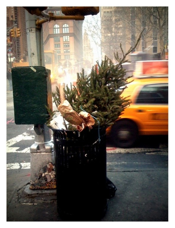 Xmas tree in trashcan