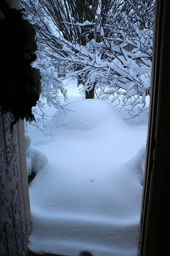 SNOWMAGGEDON 2010:Front door view2