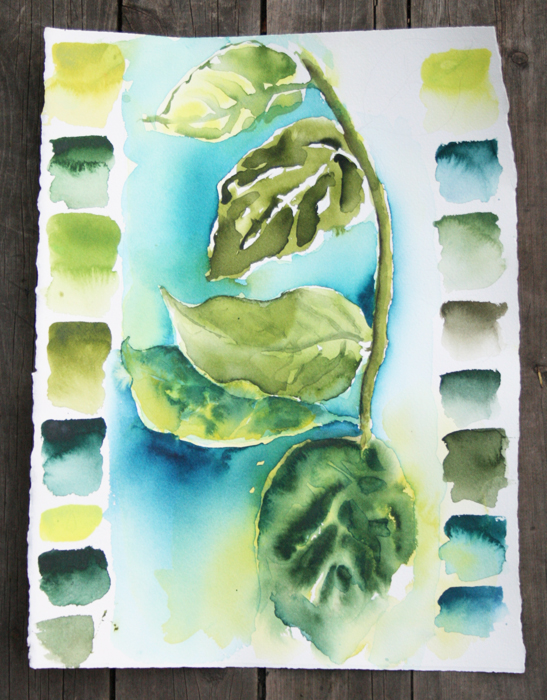 Watercolour Studies