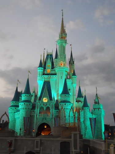 magic kingdom (321)