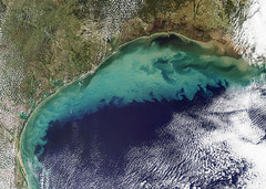Continental Shelf, Florida