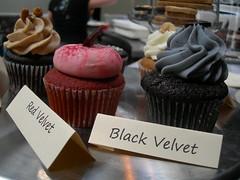cupcakes by Elizabeth Falkner