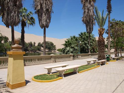 Oasis de Huacachina (4)
