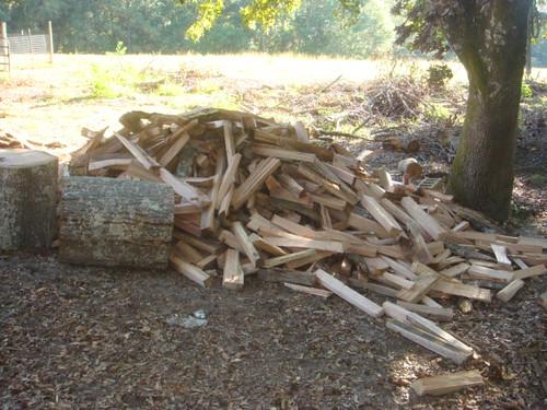 2010 Firewood