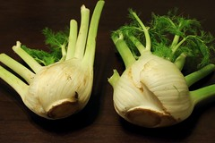 giant fennel bulbs