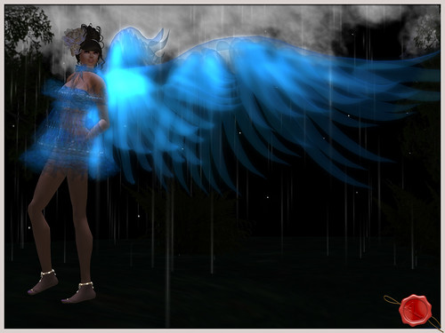 100524 RainyBlue003