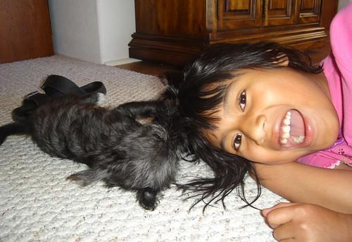 puppy-gladness