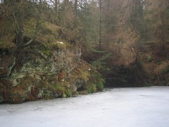 Donkey Pond, Gribdale, Flooded Whinstone Workings