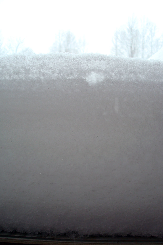12-19 snowdrift view from the back door
