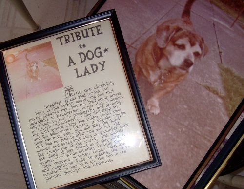 Tribute to a Dog Lady