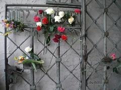 65. Jahrestag Selbstbefreiung KZ Buchenwald - 12