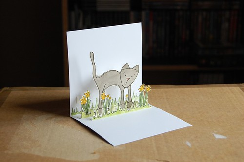 kitty likes spring 2 by you.