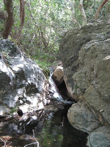 Richtis' Gorge