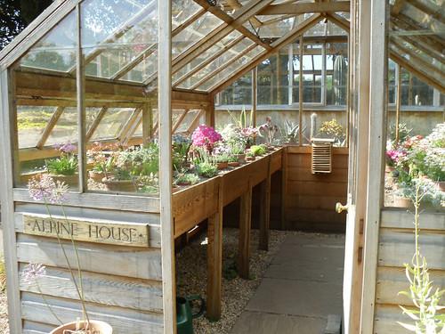 Winterbourne: Alpine house