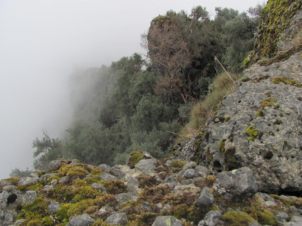 Summit of Pasochoa