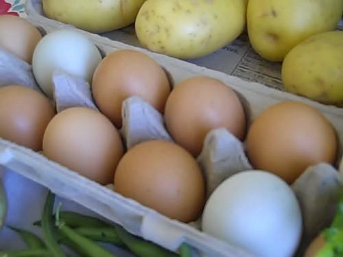 2 green eggs! 2