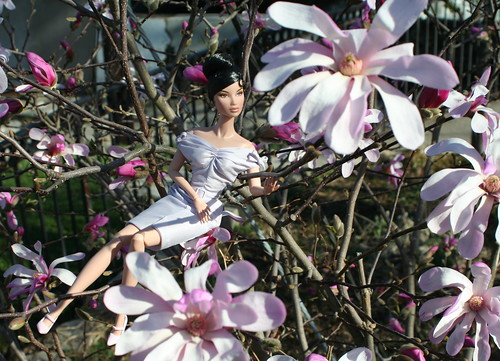 Kyori Among The Flowers