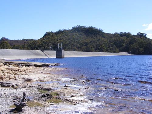 2008_0106australia20314