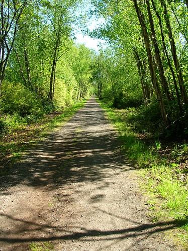 Empty trail 2