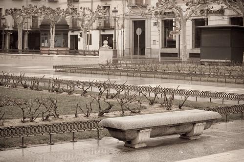 La soledad de la Plaza de Cervantes