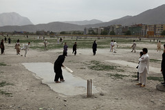 Cricket at the stadium