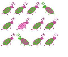 pattern_bug