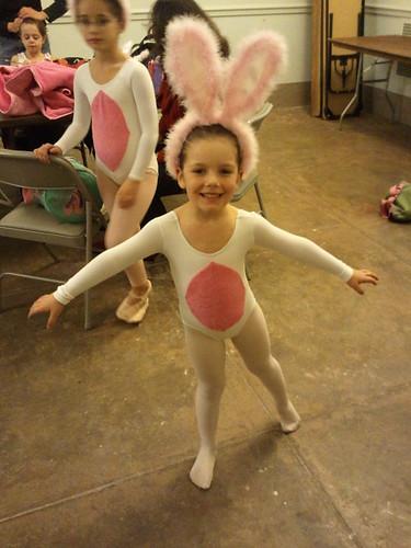 O4 the bunny