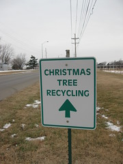 christmas tree recycling dropoff 4