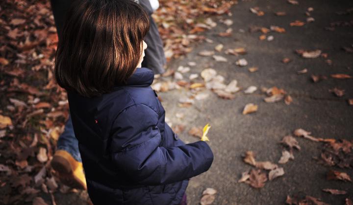 秋天的小萝莉