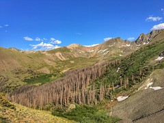 Bondholder Meadow on the Continental Divide Trail