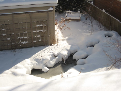 Pond after a foot of snow