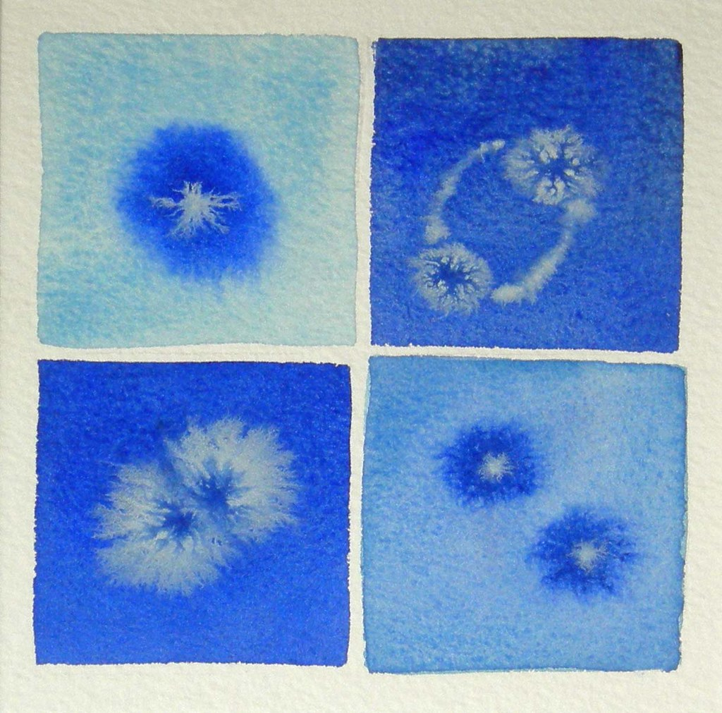 The World S Best Photos Of Cell And Mitosis