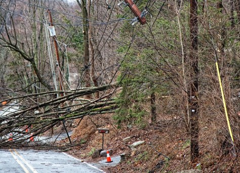 2010 wind storm - downed wires 3