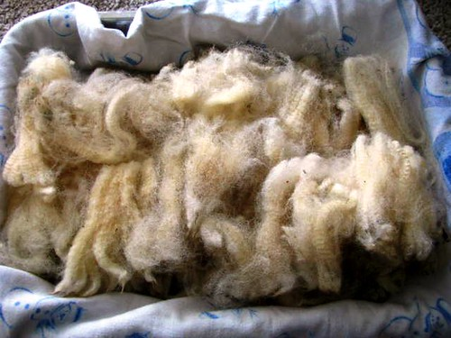 Romney Skirted Fleece from OFFF