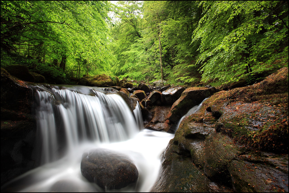 Waterfall @ the Birks