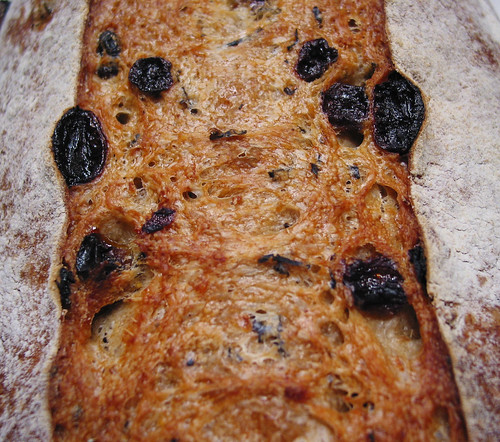 Clementine Sultana Earl Grey Tea Sourdough