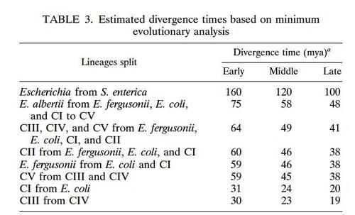 divergencetimes
