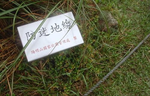 Yangmingshan - Huangzuishan
