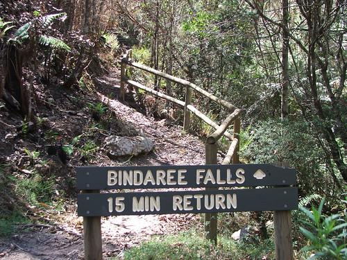 Start of Bindaree Falls Hike