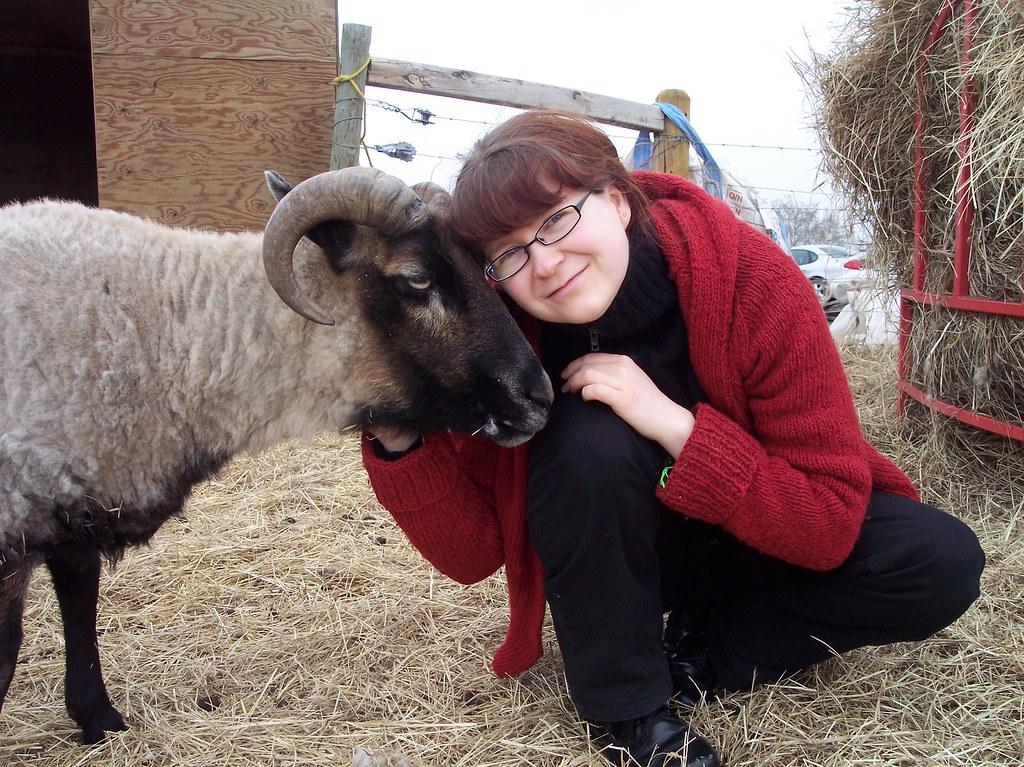 Sheep Shearing 2010 - cuddling with Rolf