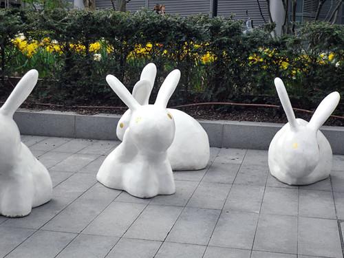 Rabbits in Spitalfields