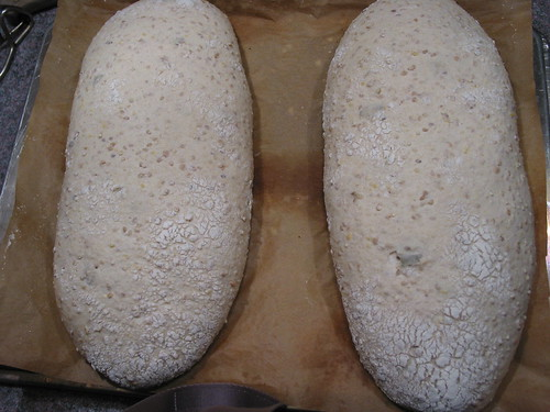 ready-to-bake shaped loaves