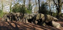 Museets ligger ved siden af den største hunebed i Holland