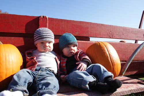 Boys At Pumpkin Patch