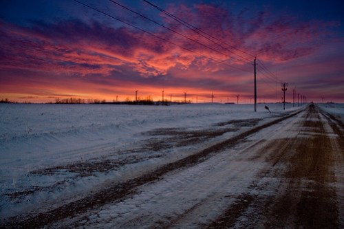Photo of winter fields in SW Minnesota at sunset with the Buffalo Ridge windfarm in the distance