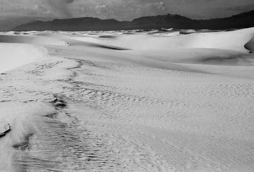 land. scape. by InkSpot's Blot