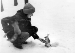 Tame Squirrels in Akademgorodok, late 1970's