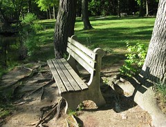 """Silver Lake Park Bench"" © 2010 by Jim Gardner"